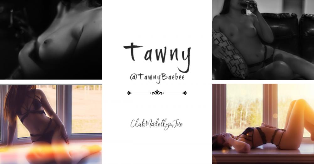 Tawny.thumb.png.e7e4639e8a0172ba8beef3ea0eb9e48d.png